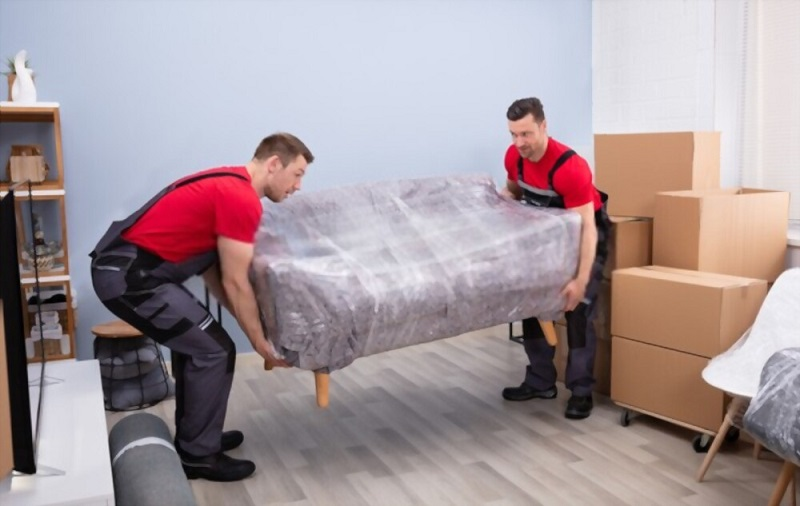 expert furniture removalists